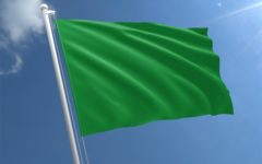 Why We Wore Green